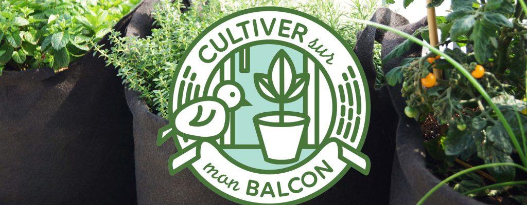 cultiver sur balcon L
